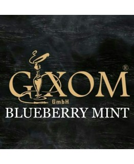 Табак GIXOM Blueberry Mint 200 гр