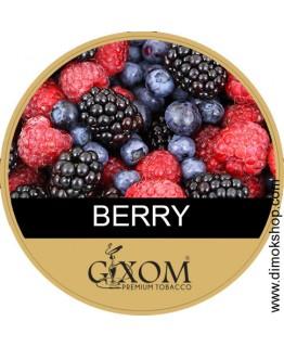 Табак GIXOM Berry 200 гр