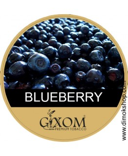 Табак GIXOM Blueberry 200 гр